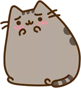Pusheen Blush